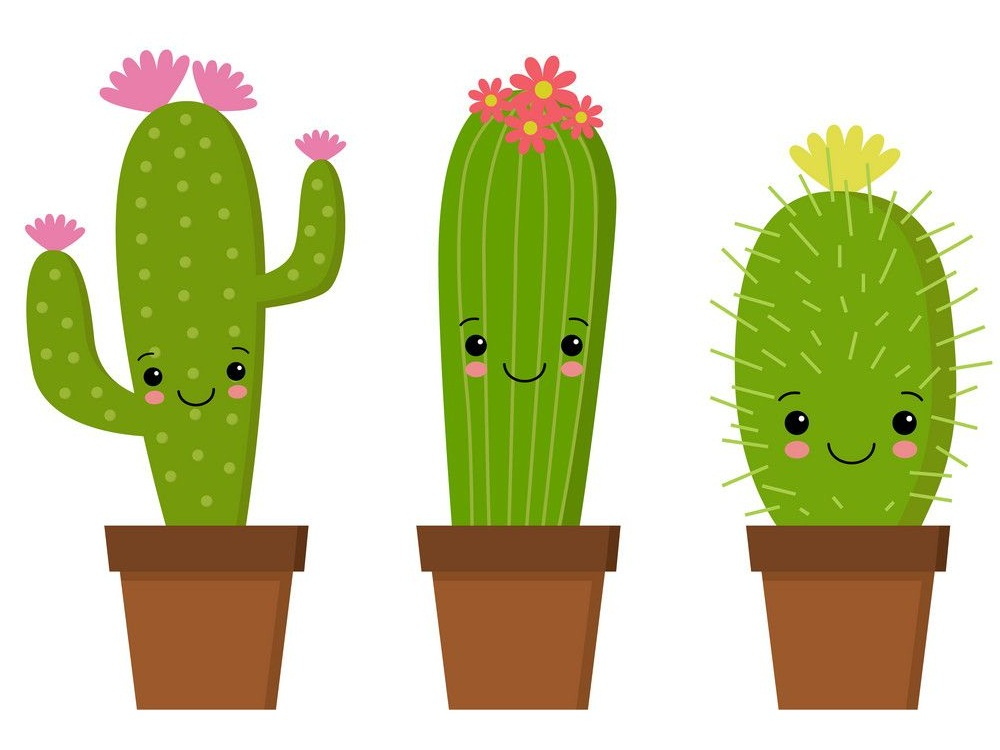 three cute cactuses