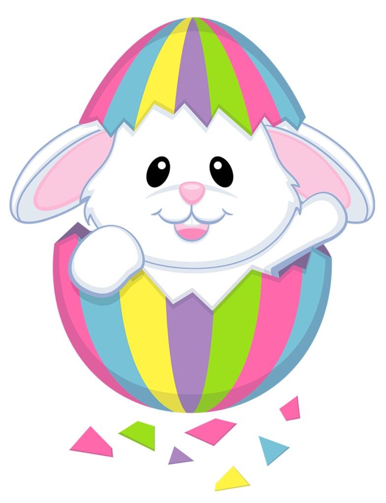 lovely bunny in the egg