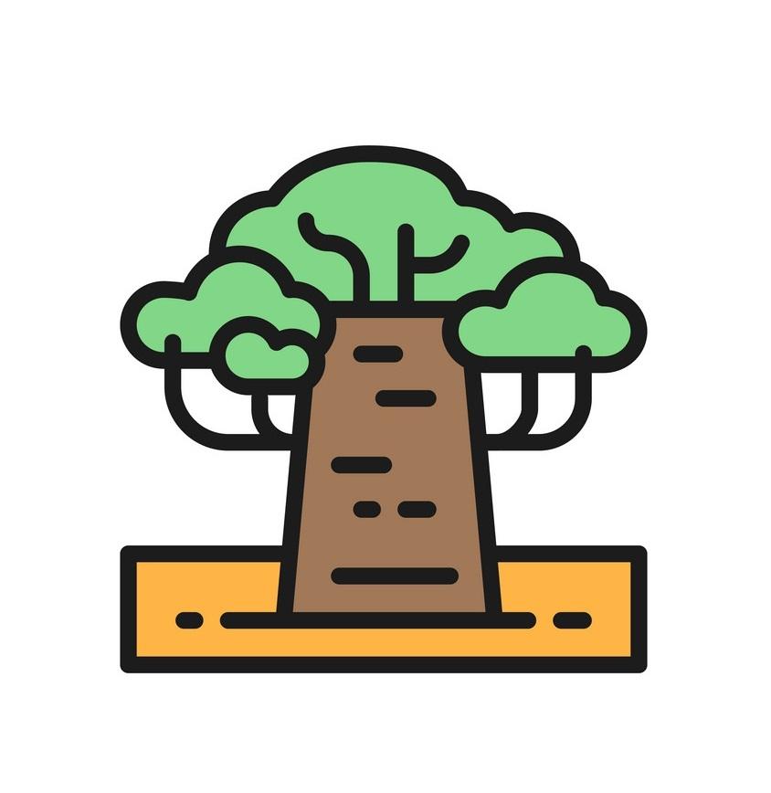african baobab icon
