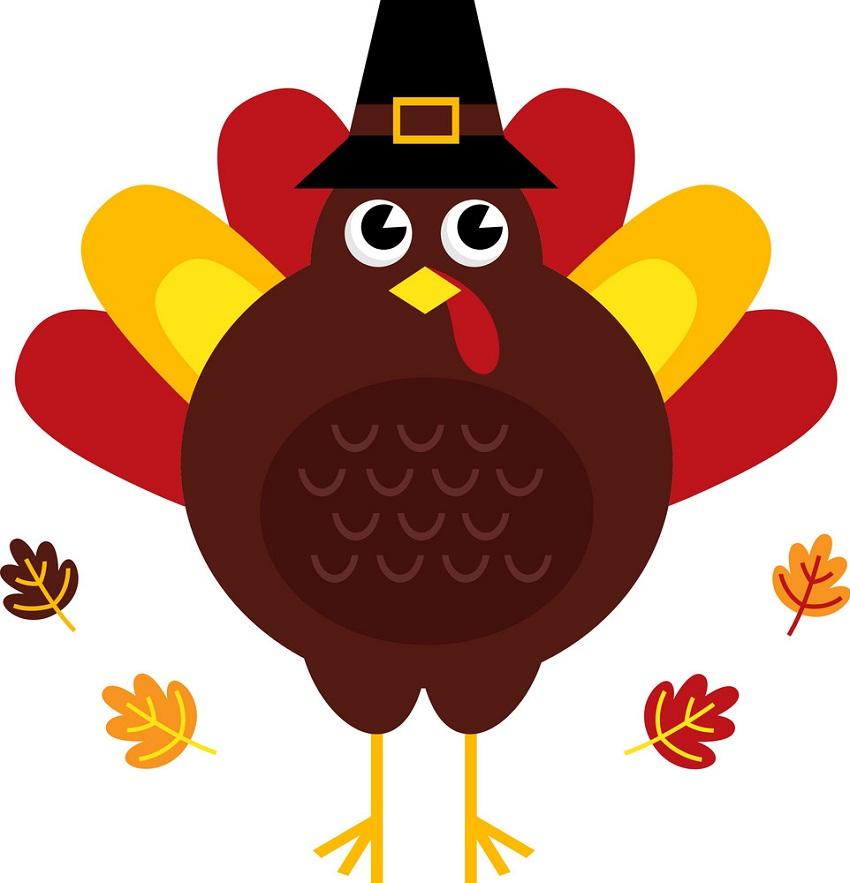 autumn turkey