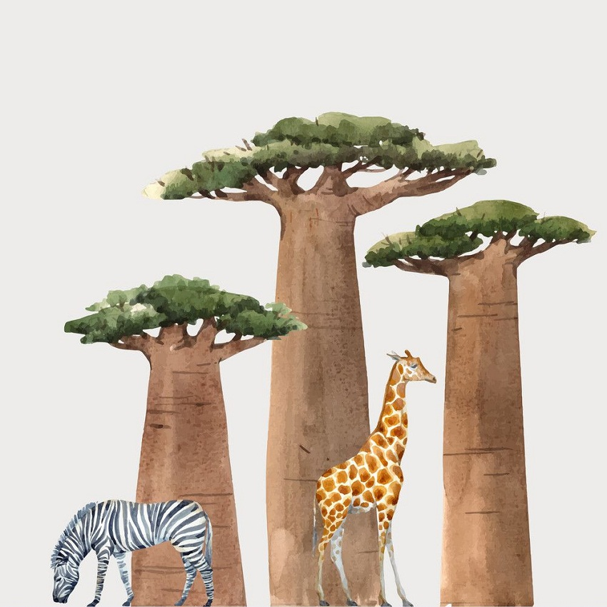 babobab trees with animals