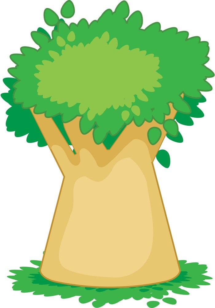 baobab tree 1