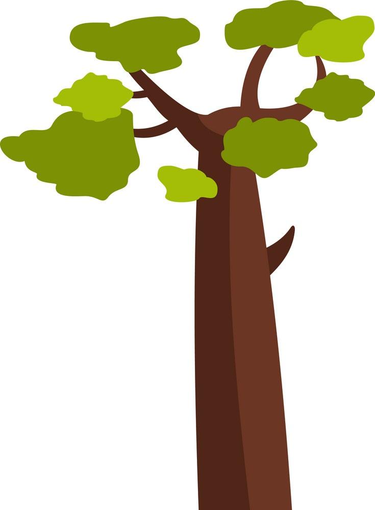 baobab tree 2