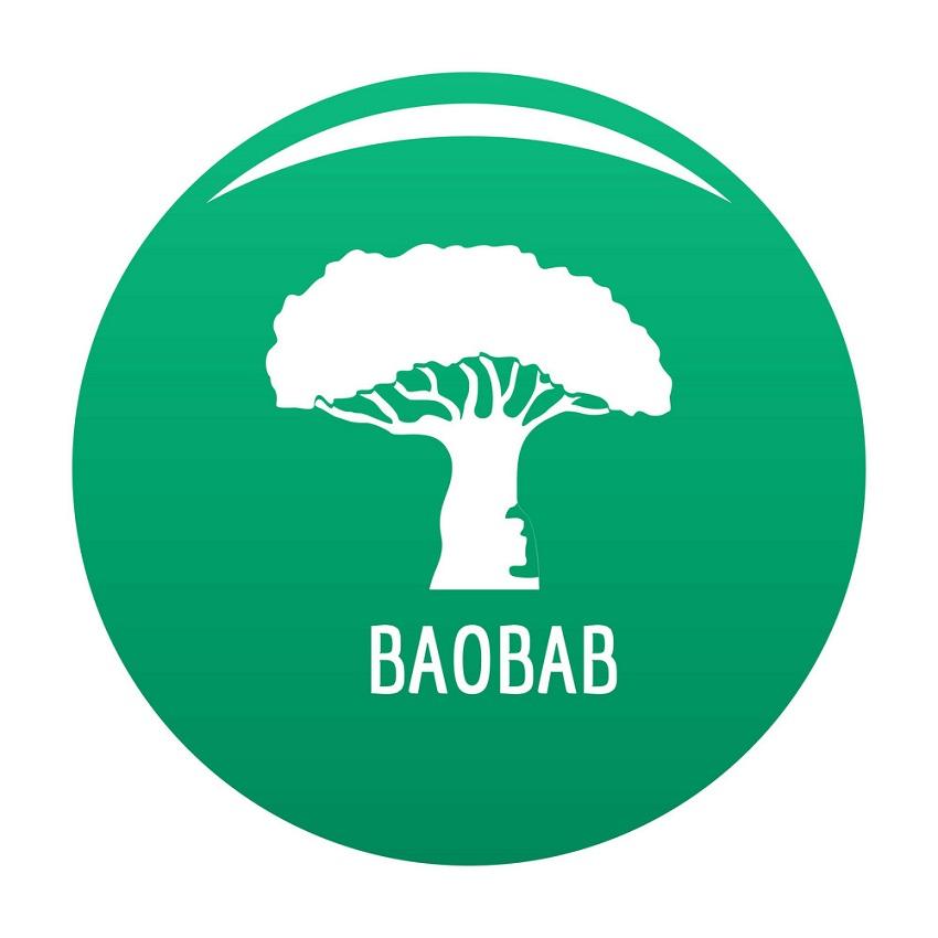 baobab tree logo