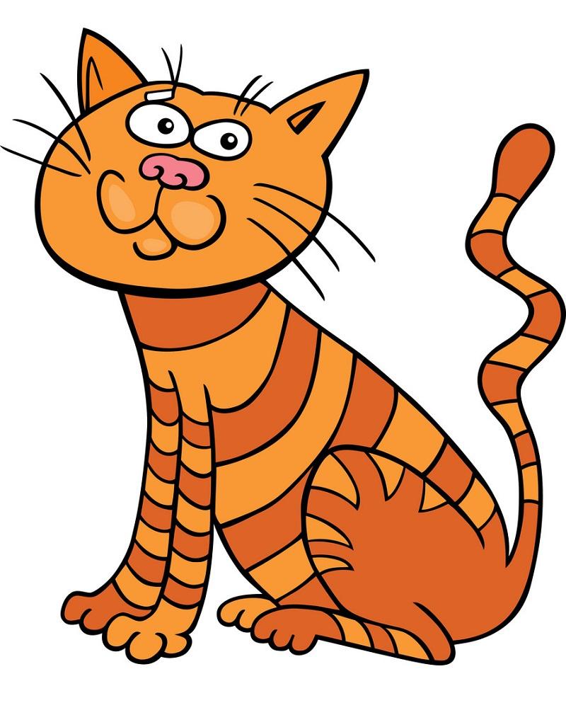 funny orange zebra cat