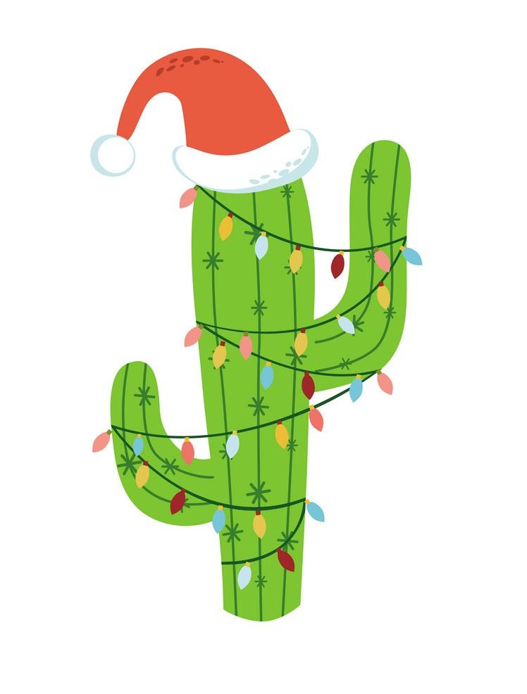 Christmas cactus in Santa hat