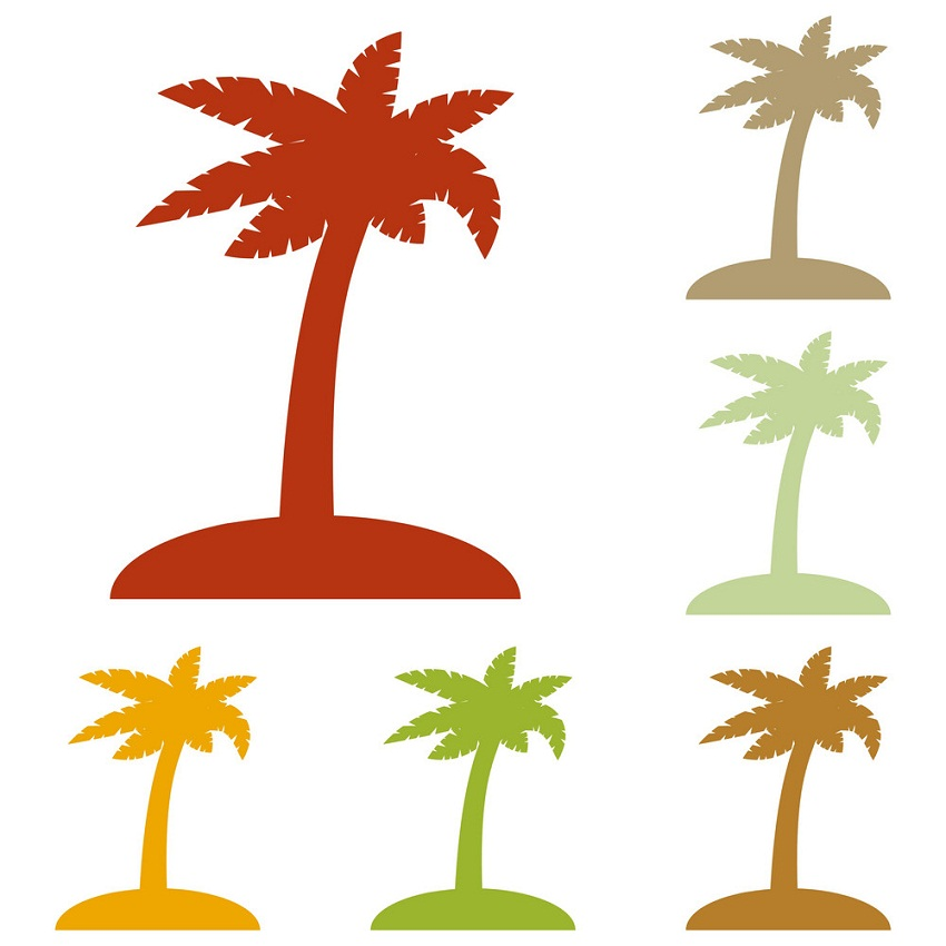 coconut palm trees sign