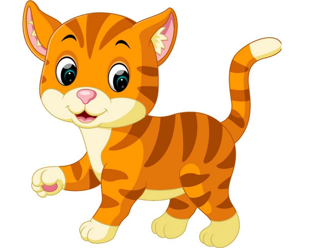 lovely orange cat