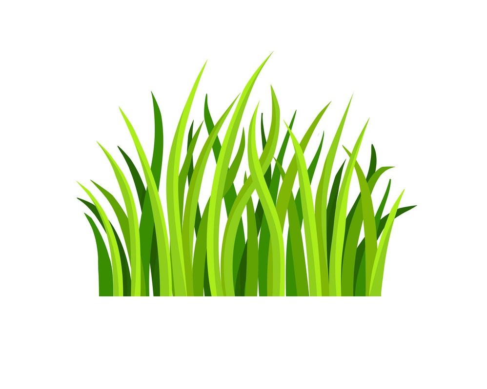 flat of grass