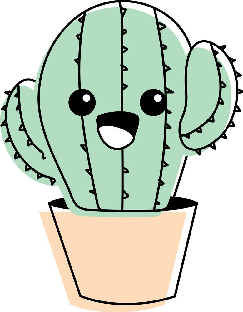 Lovely tender cactus plant