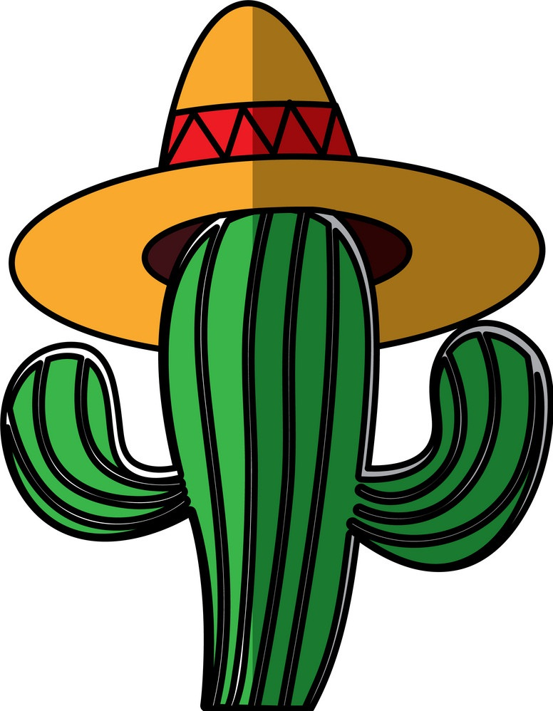 mexican cactus with hat