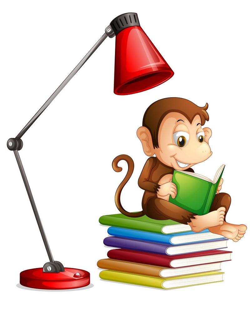 Monkey reading book