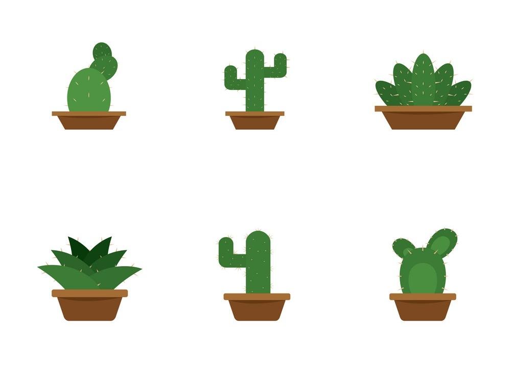 Set of cactus icons