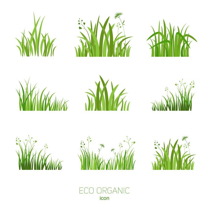 set eco green grass