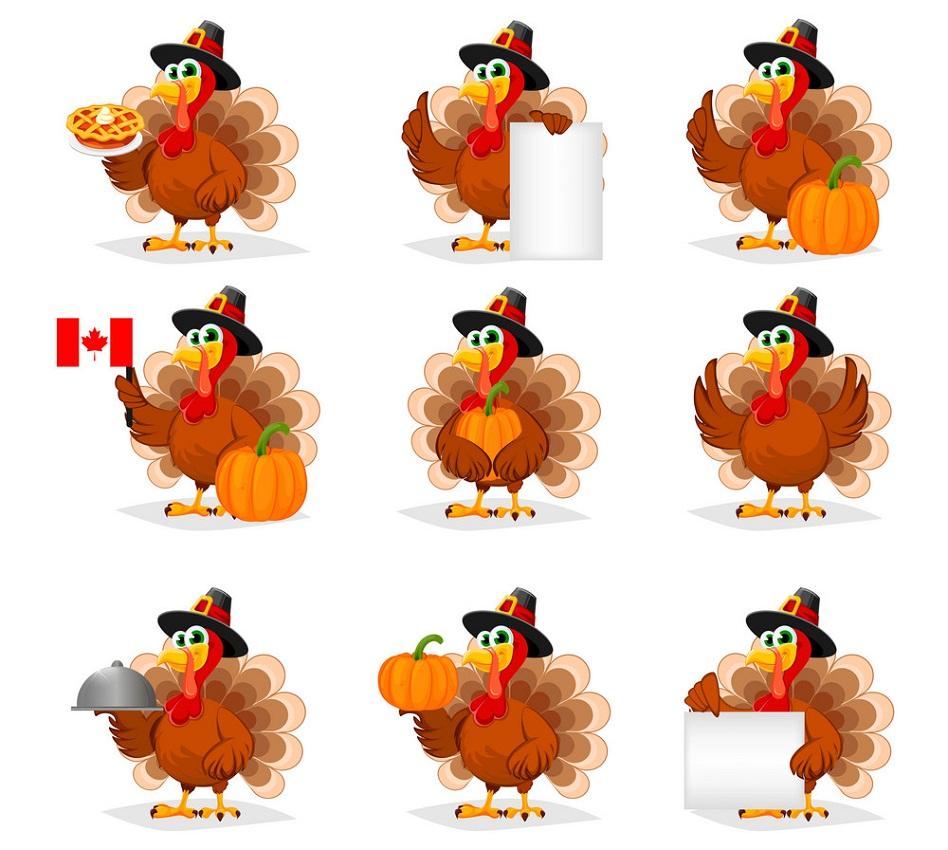 set of turkeys