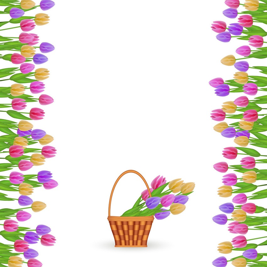 tulips and tulips basket