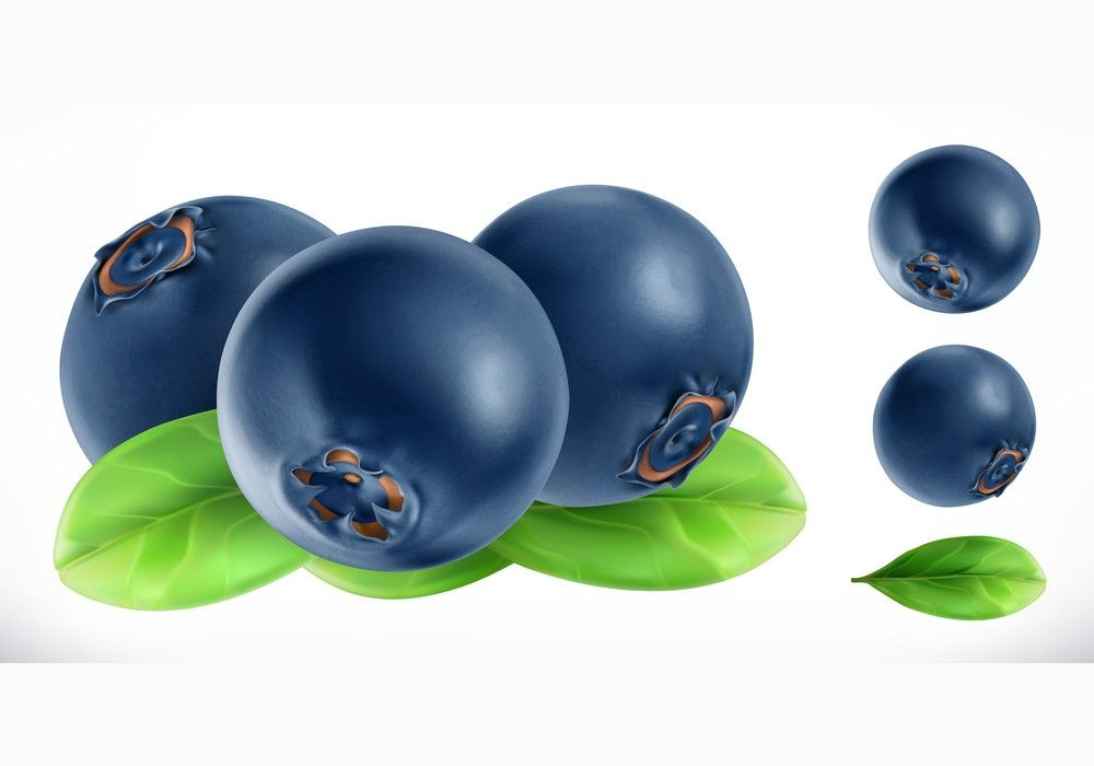 3d fresh blueberry fruit