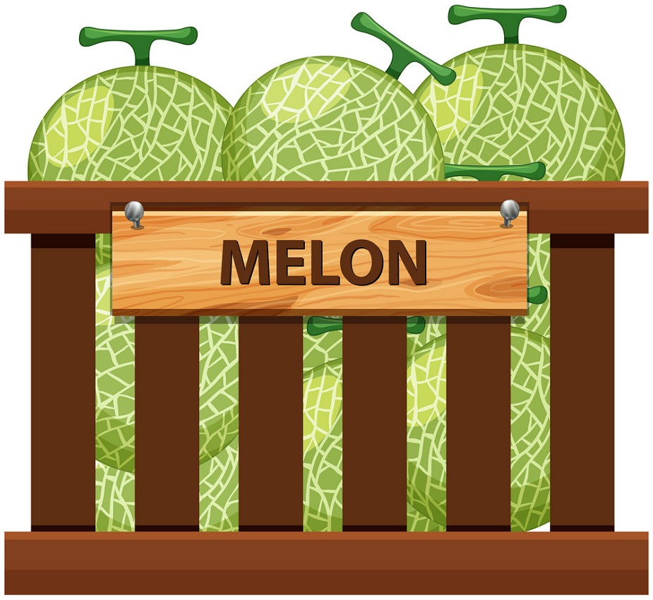 a crate of melons