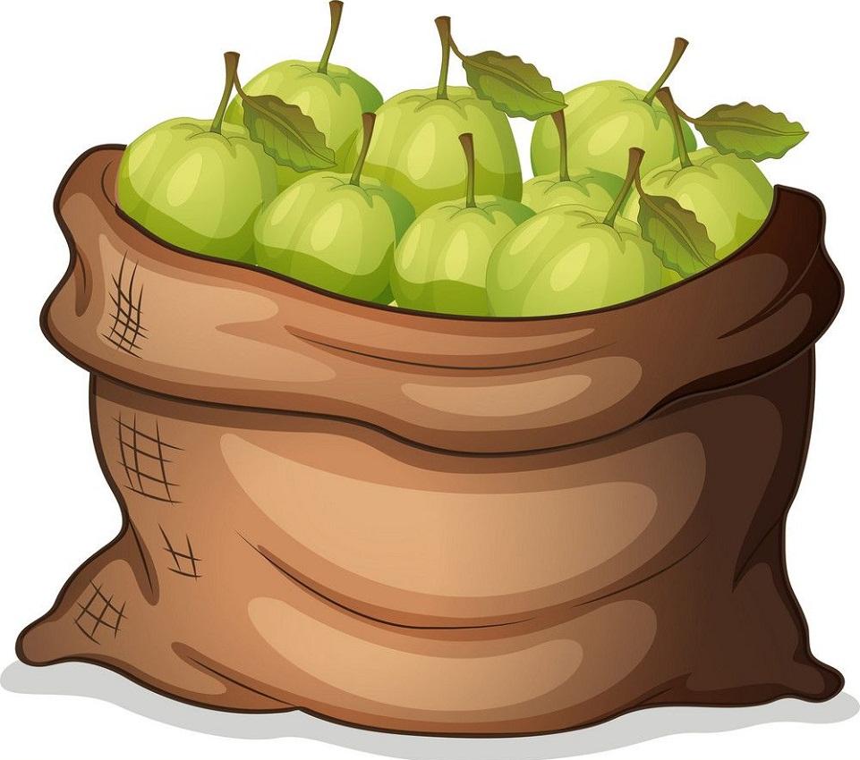 a sack of guavas