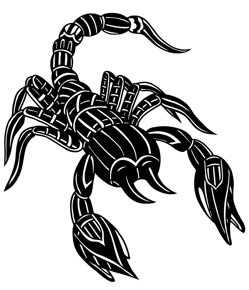 abstract scorpion