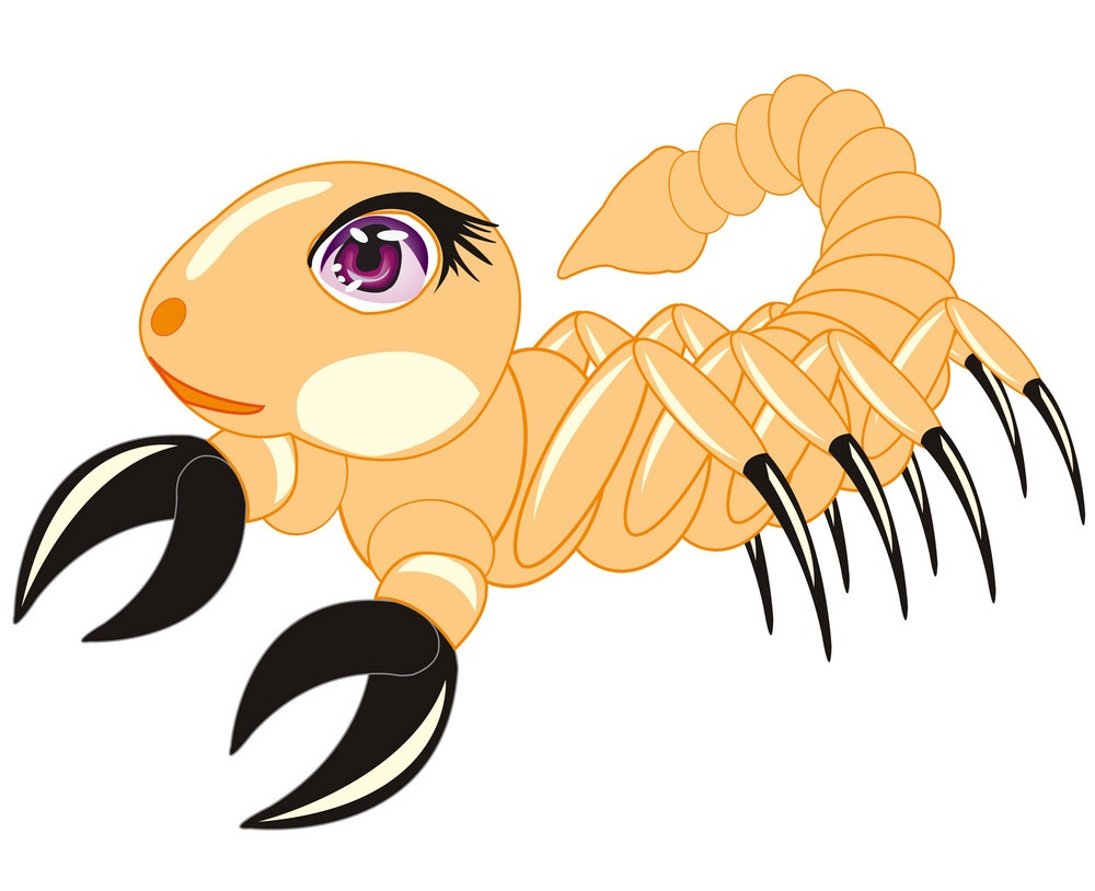 adorable scorpion