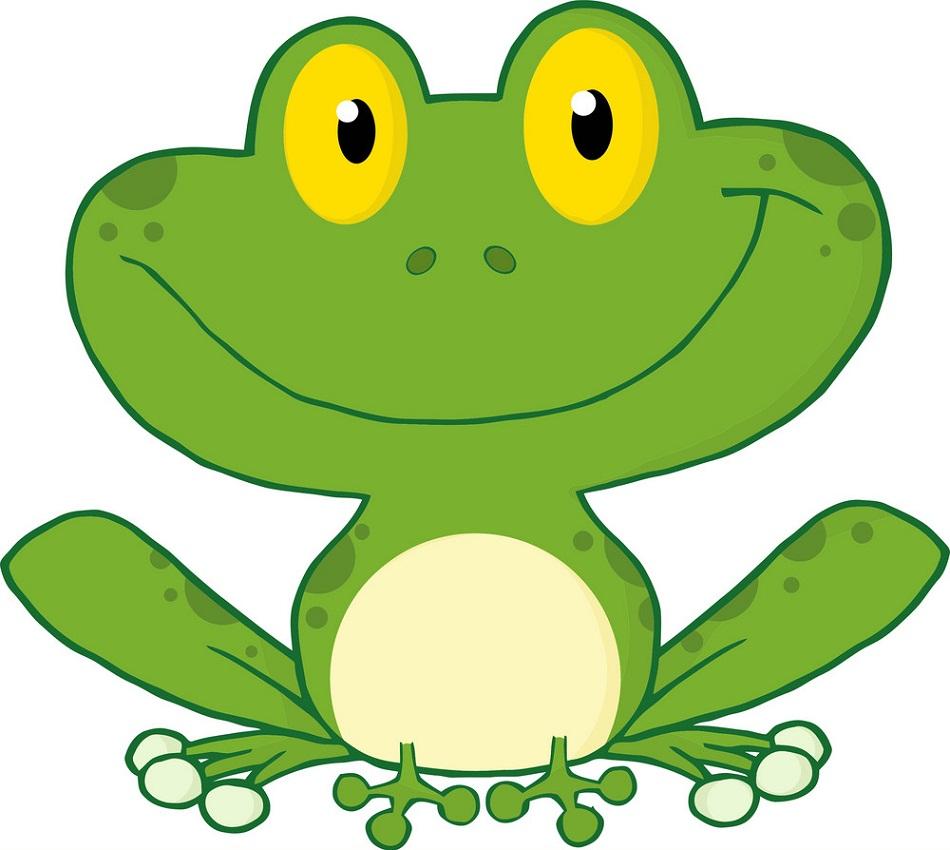 big face frog smiling