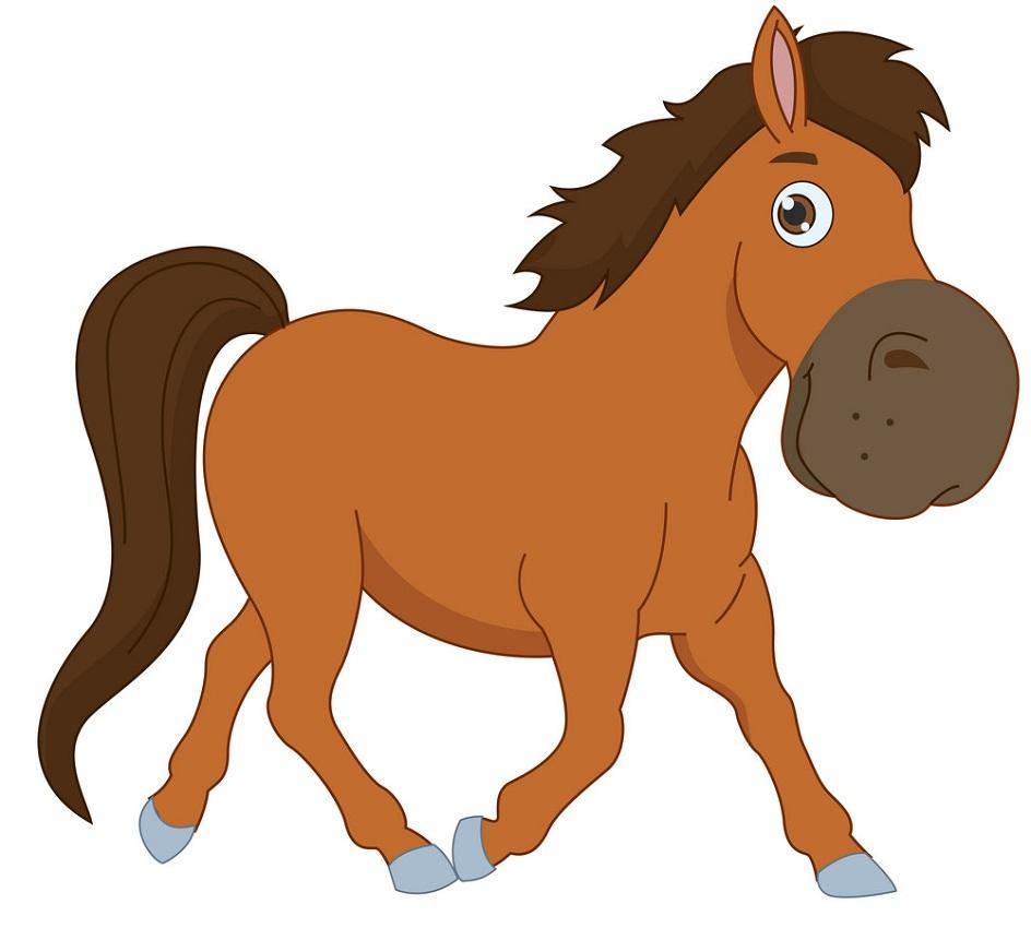 big nose horse