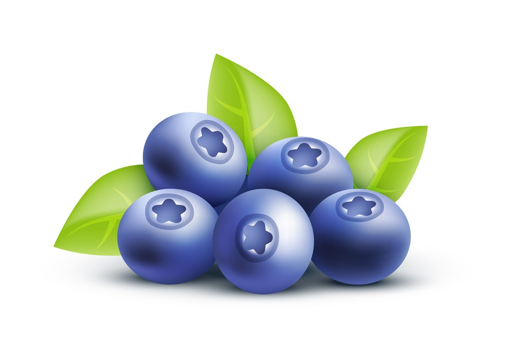 blueberries 3