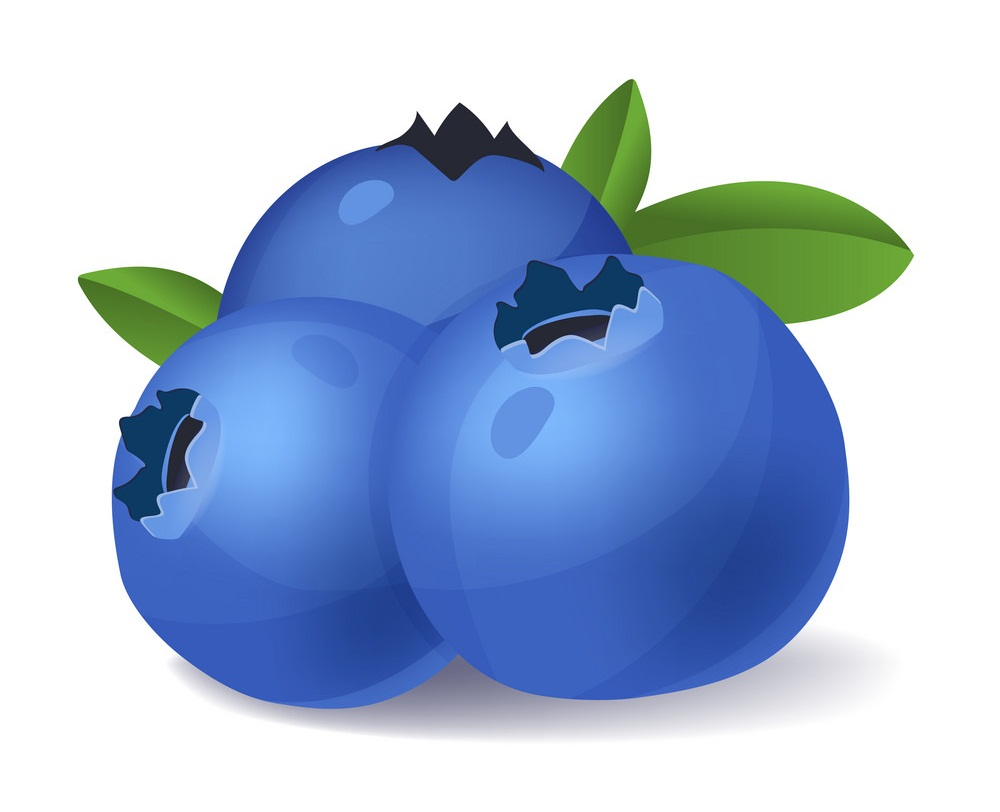 blueberries fruit 1