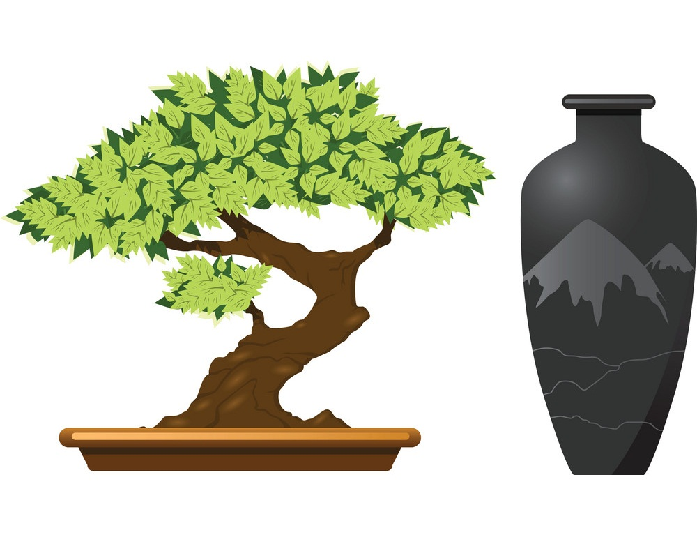 bonsai tree and antique vase