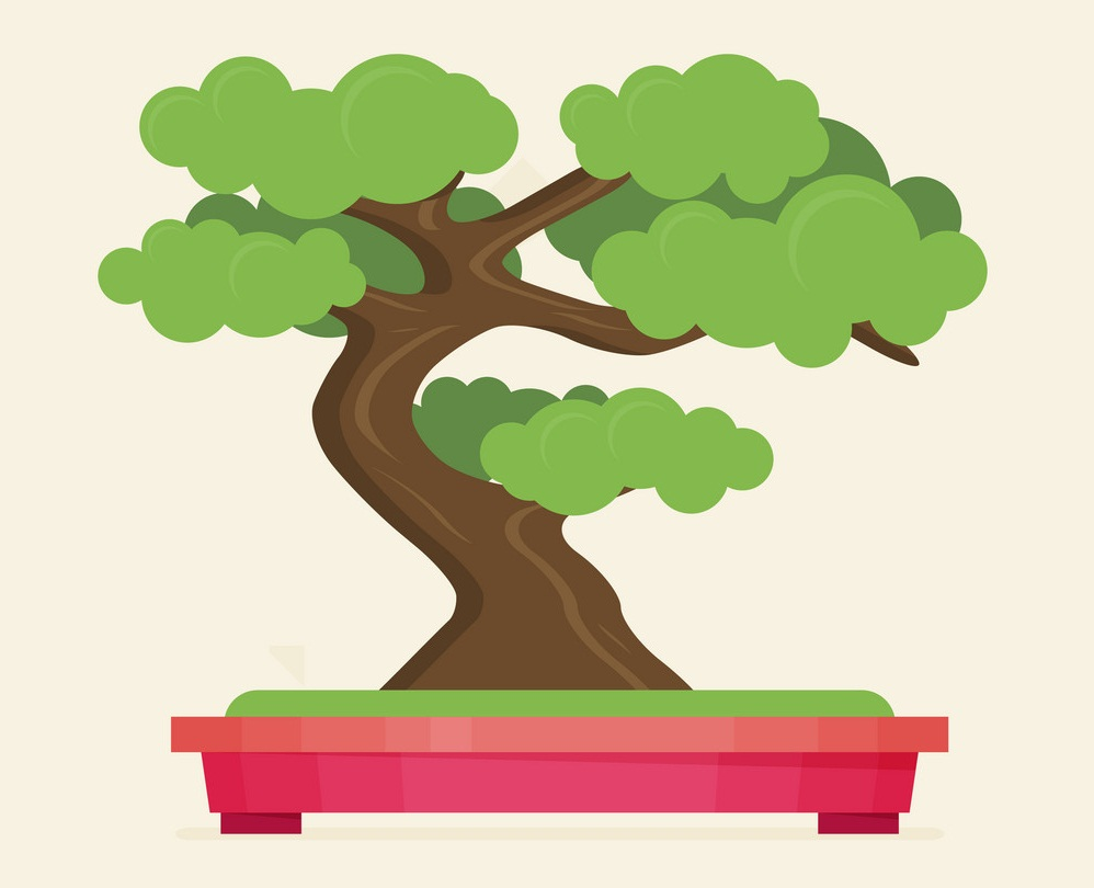bonsai tree in pink pot