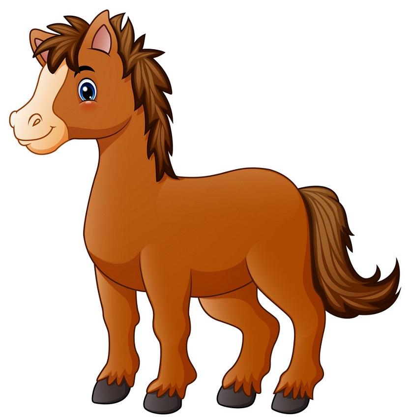 brown pony horse