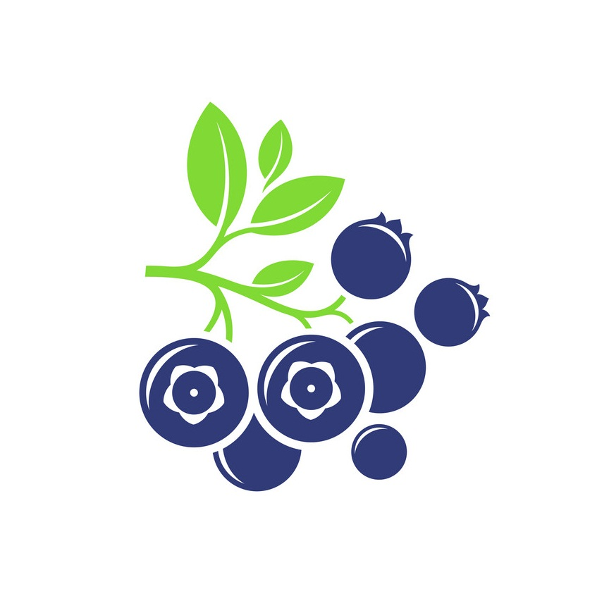 bunch of blueberry icon