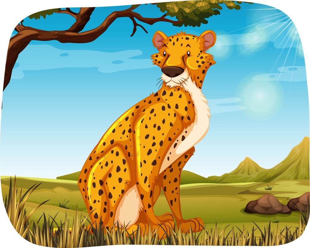 cartoon african cheetah