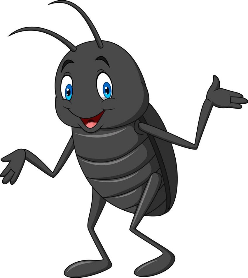 cartoon black beetle
