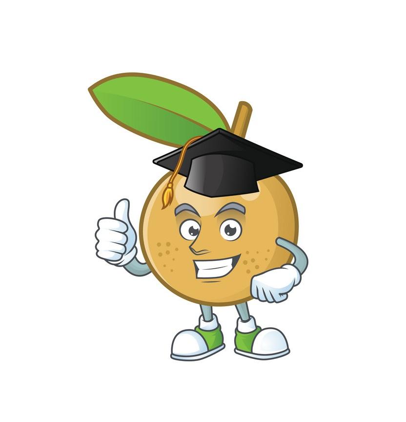 cartoon graduated longan
