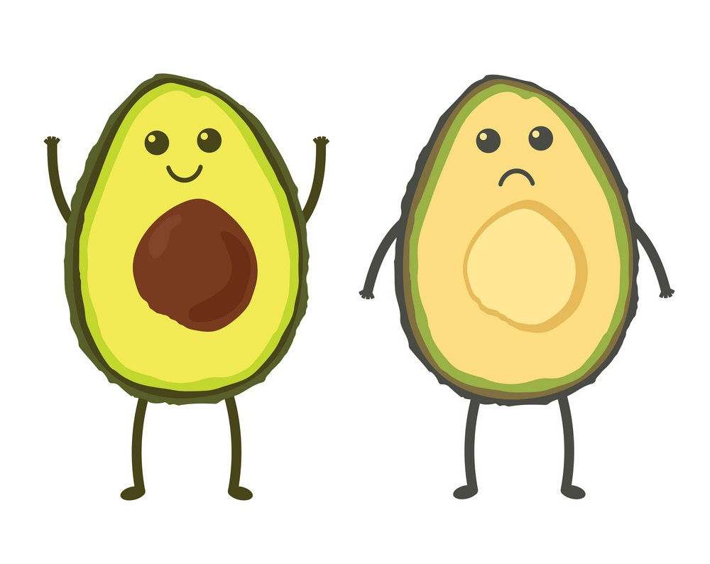 cartoon happy and sad avocado