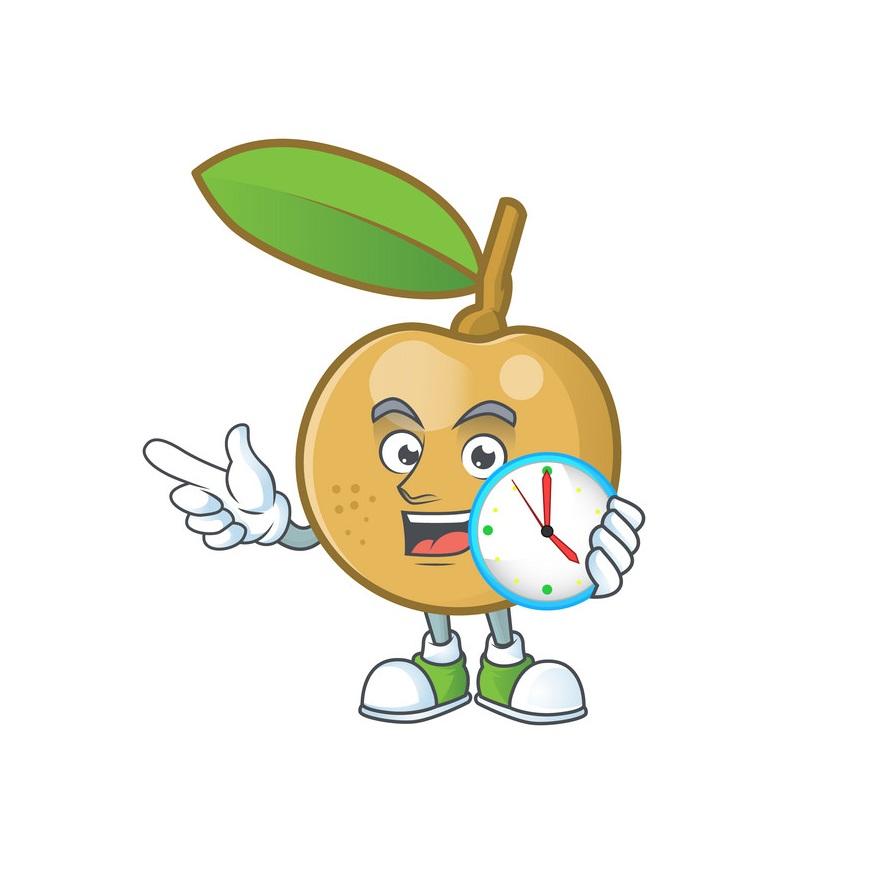 cartoon longan holding a clock
