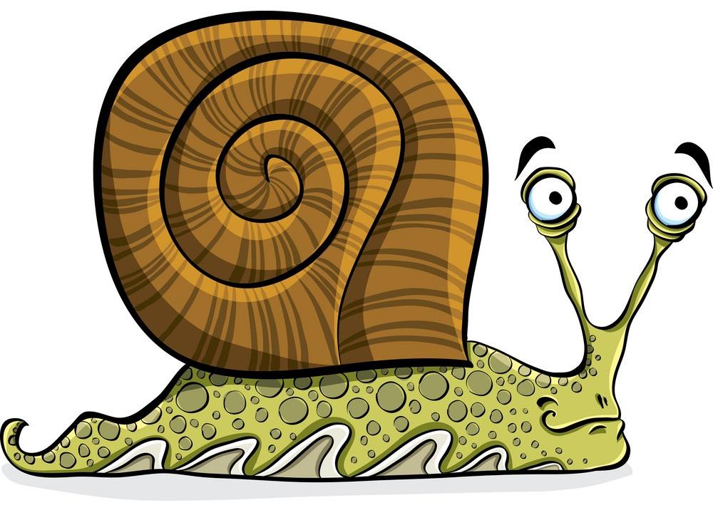cartoon old snail