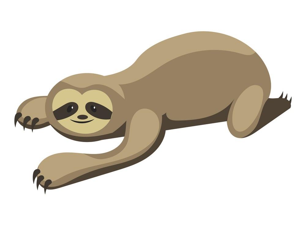 cartoon sloth
