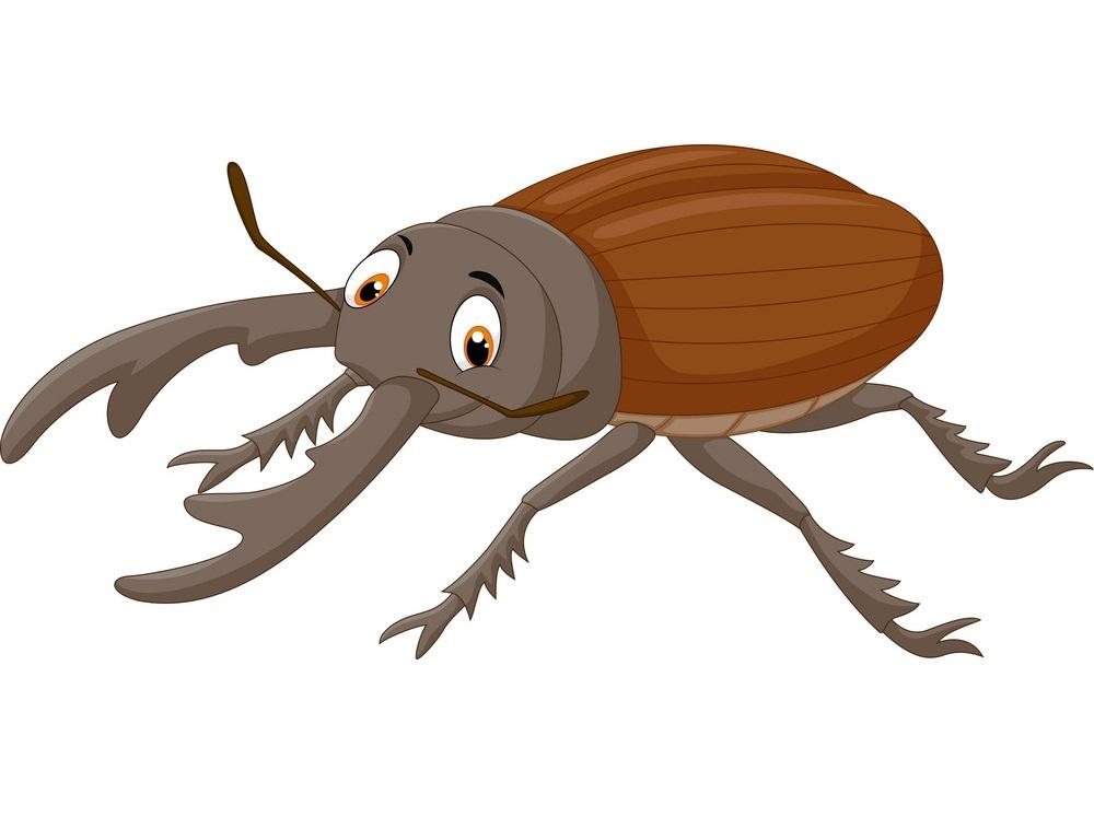 cartoon stag beetle 1
