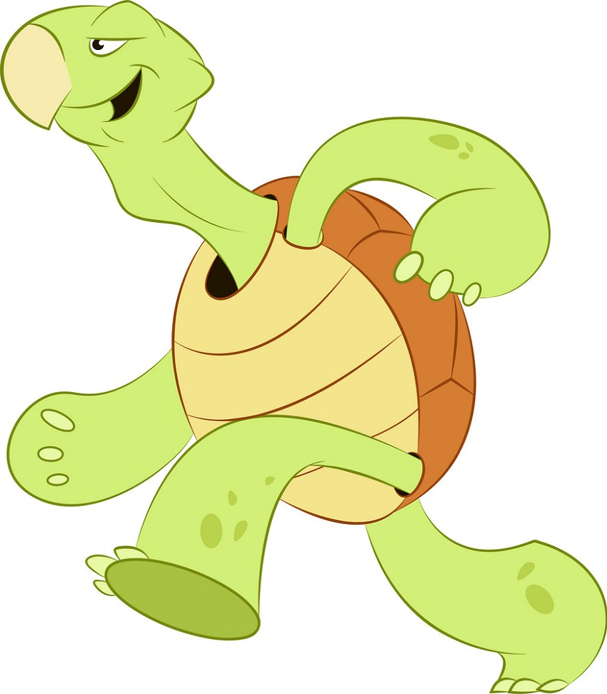 cartoon tortoise running