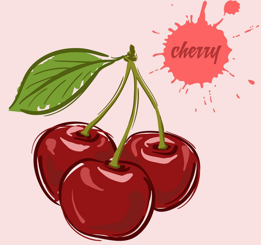 cherries hand drawn
