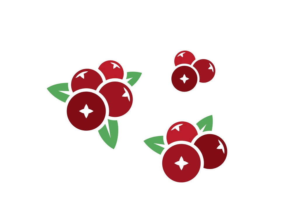 cranberries icon