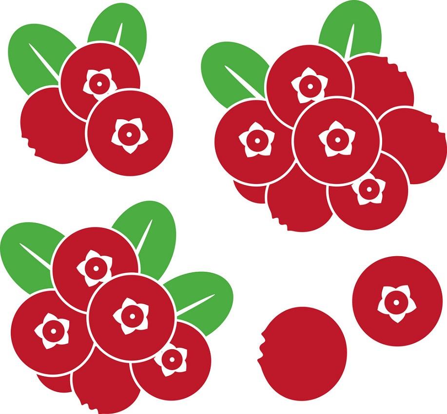 cranberry icons