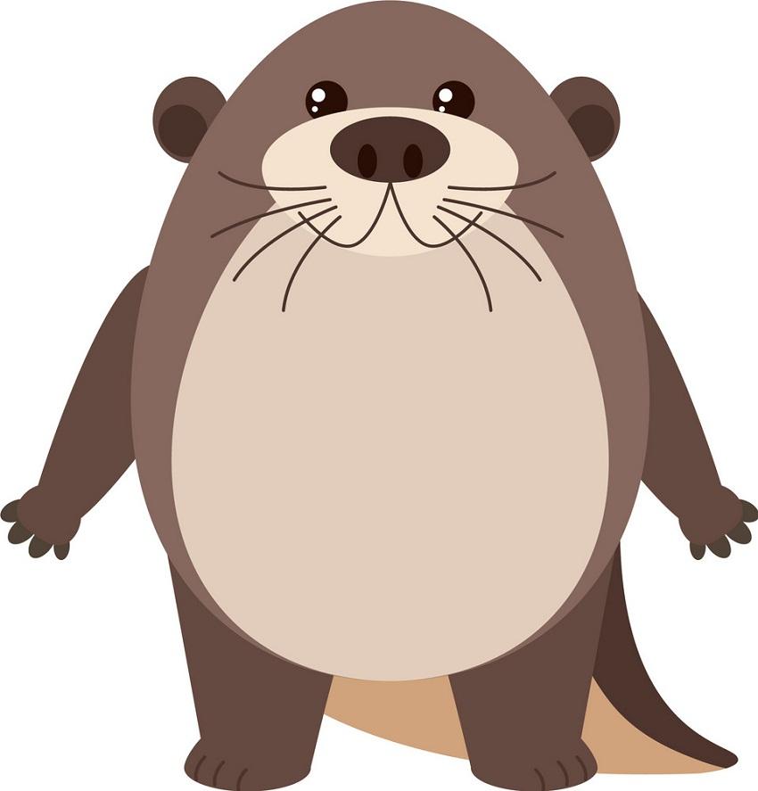 cute fat otter