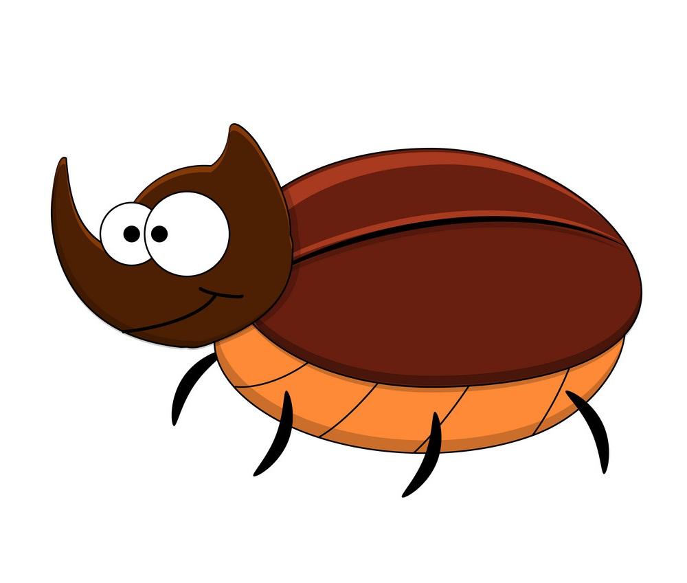 cute rhinoceros beetle