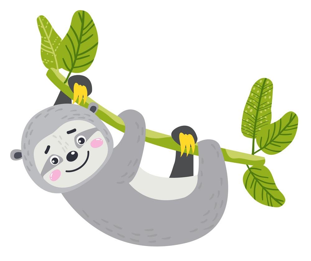 cute sloth hanging on vines