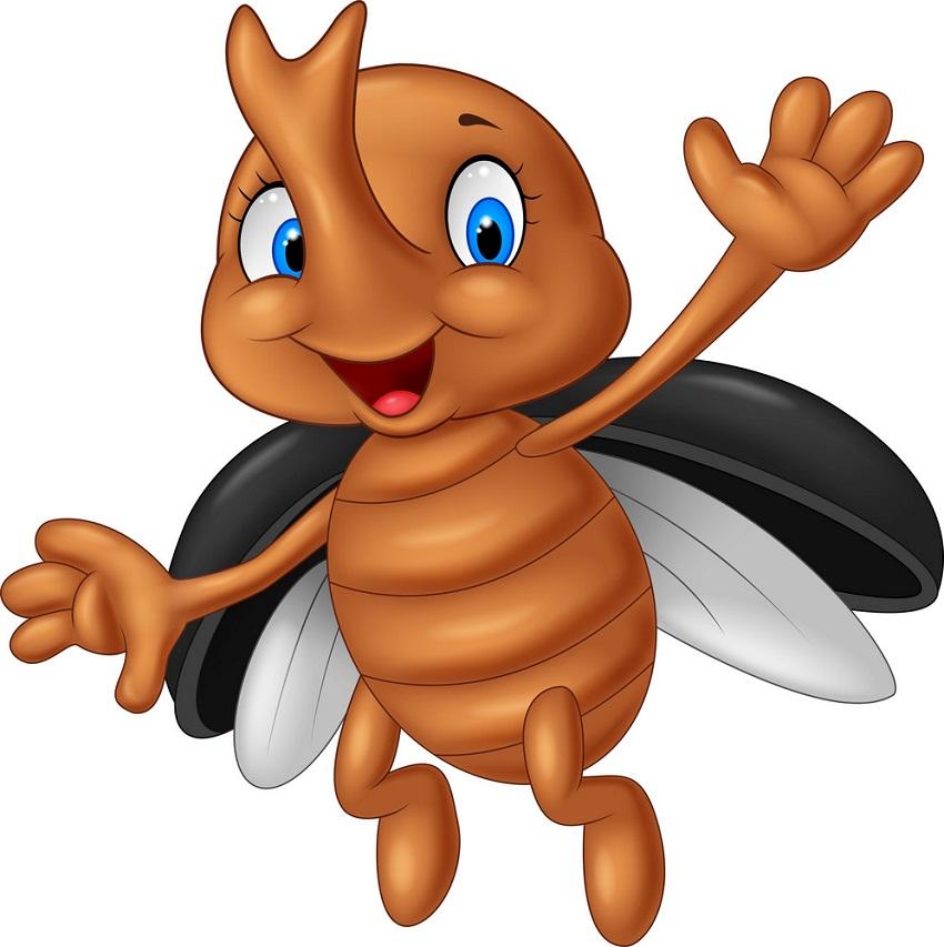 cute stag beetle