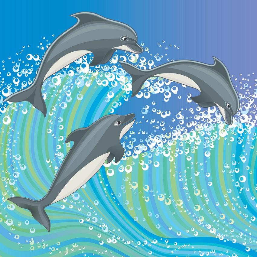 Dolphin Clipart